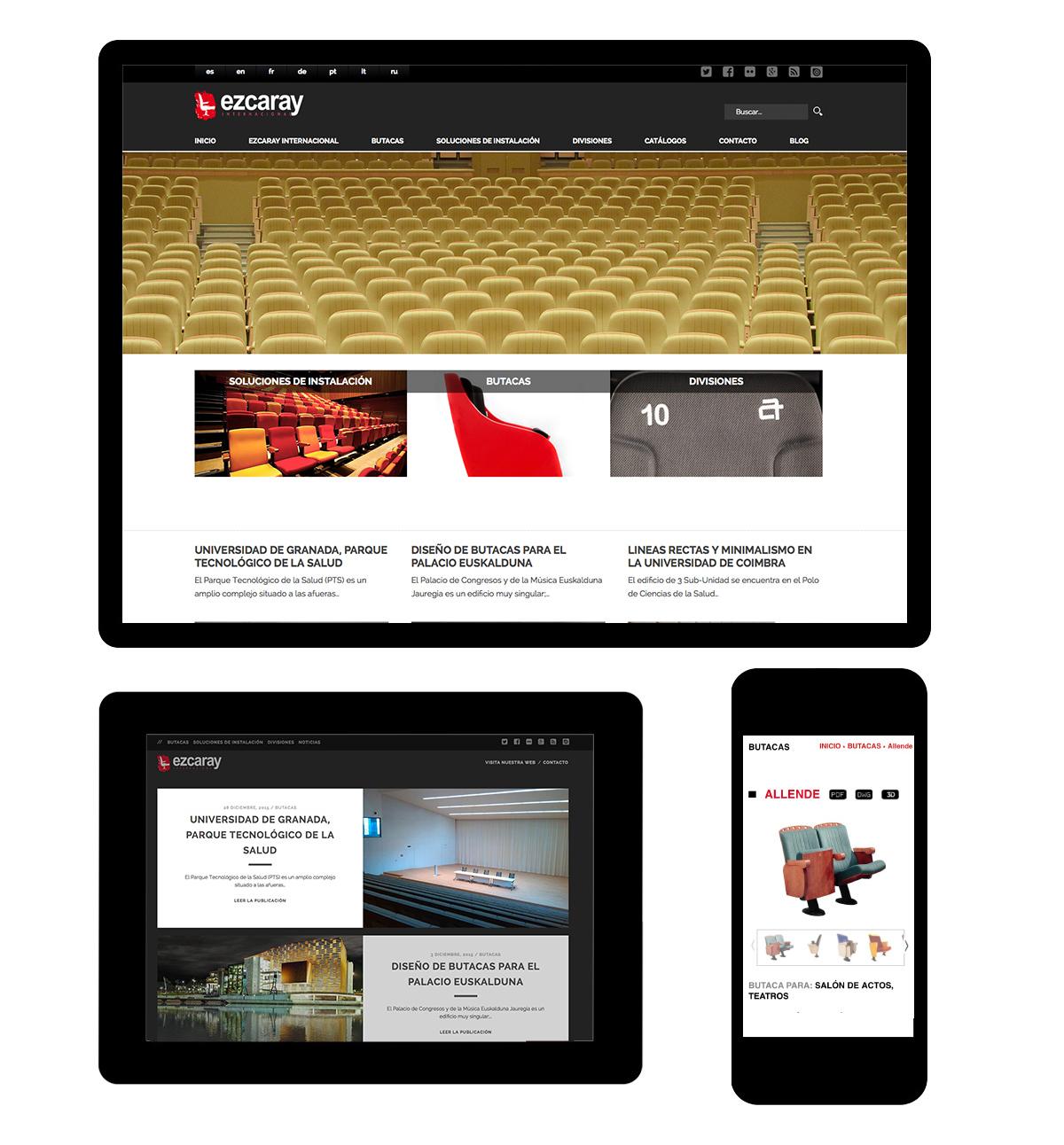 Diseño página web Ezcaray Internacional
