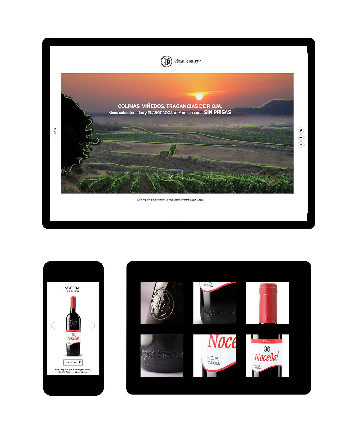 Diseño web Logroño - Bodegas Fuenmayor