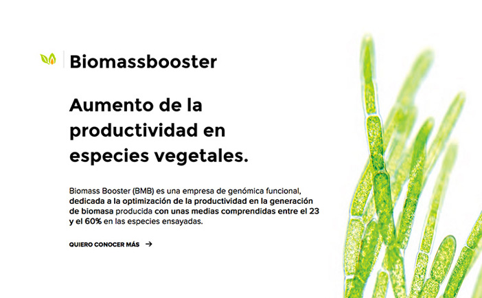 biomassbooster2